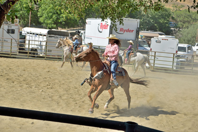 Cowboys & Cowgirls Warmup 3 Bill Pickett Rodeo Rowell Ranch Hayward, Ca. Warmup Horses Bill Pickett Born 1870 Jenks-Branch,Texas Cowboy Rodeo Legend ProRodeo Hall Of Fame Wild West Shows Bill Pickett Invitational Rodeo 33rd Anniversary Exhibition Equestrian Sport National Touring Rodeo Competition Professional Rodeo Cowboys Association Cowboys Cowgirls Corral Fence Horse Trailers Trucks