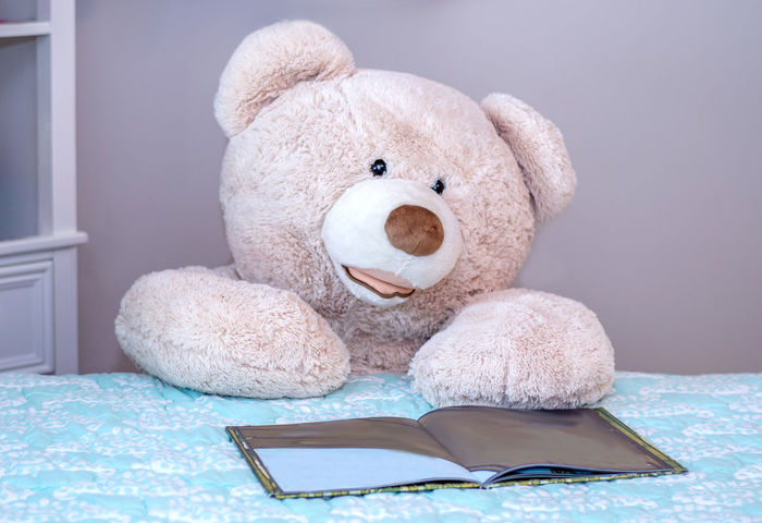 This giant teddy bear is reading a children's book in his bedroom Fun Animal Representation Bed Child's Toy Childhood Close-up Comical Day Expression Furniture Giant Toy Bear Home Interior Indoors  Life Size  Reading A Book Representation Softness Still Life Story Book Stuffed Stuffed Toy Teddy Bear Toy Toy Animal White Color