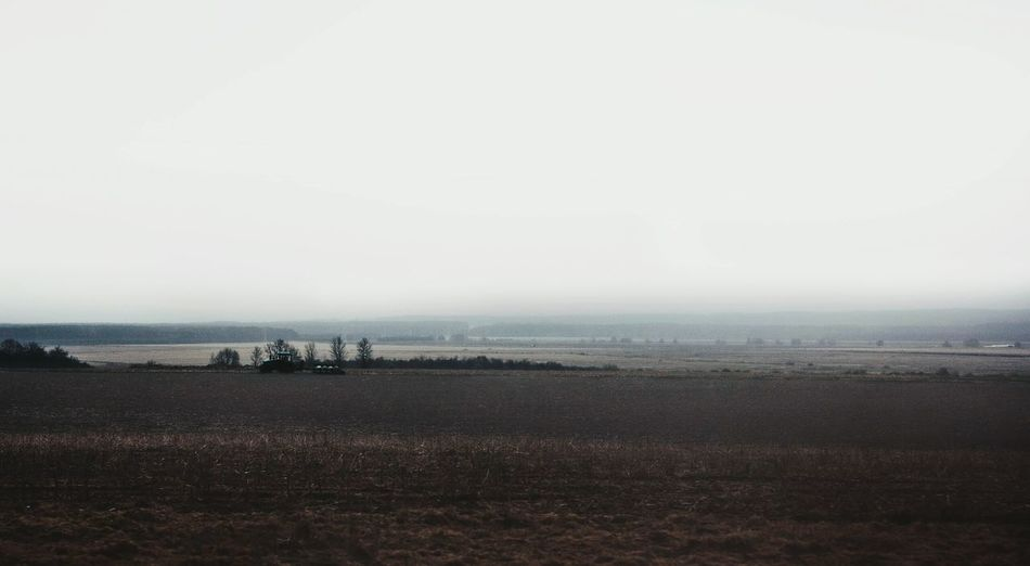 Agriculture Outdoors Fog Sky Rural Scene Nature Field Landscape Plowed Field No People Tranquility Beauty In Nature Cloud - Sky Forest Social Issues холодно Horizon Over Water Day