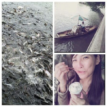 กินติมจากเรือคุณลุงขายมาเกือบ 50 ปี และให้อาหารปลา @octoiijane Fish วัดปากน้ำ ไอศครีม