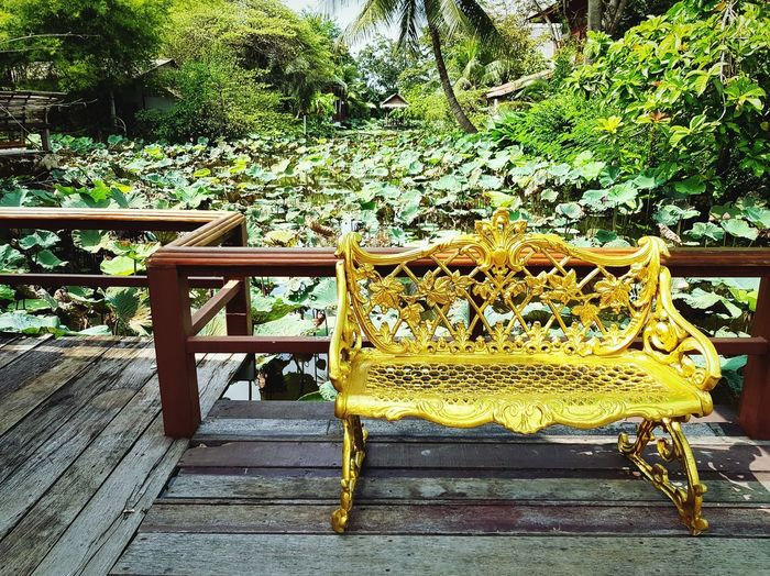 Gold bench and