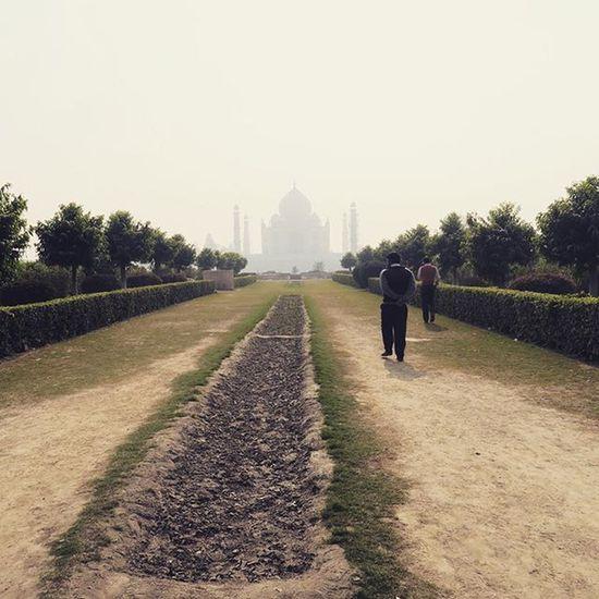 View of the Taj Mahal from Mehtab Bagh park across the yamuna river. Rachatravelsindia Agra