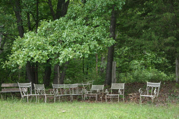 Abandoned Places Beauty In Nature Chair Chairs In A Row Day Grass Green Color Nature No Filter No Edit No People Outdoor Chair Outdoors Place To Sit Seating Tranquil Scene Tranquility Tree