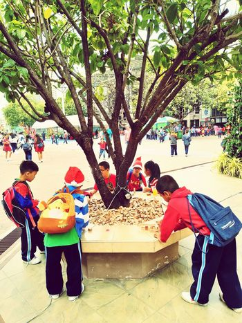 Playing of children.EyeEmNewHere Tree Large Group Of People Lifestyles Real People Leisure Activity Day Park - Man Made Space Outdoors Warm Clothing Full Length Winter Nature Friendship Together MerryChristmas