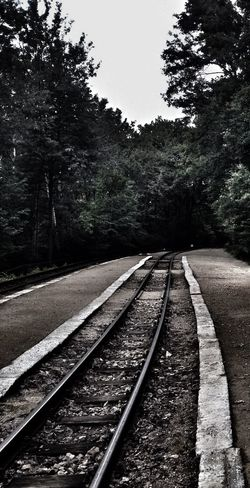 Train Train Station Trip Rails Nowhere Road To Nowhere ...we're On The Road To Nowhere... Forest Glade Somewhere Mystery Mysterious Dark Darkness Strange
