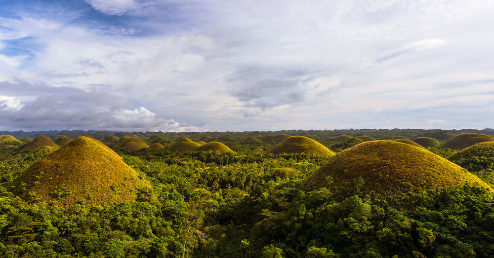 Chocolate Hills on Bohol Island Bohol Cloudy Hills Nature Philippines Scenic Travel Beauty In Nature Chocolate Hills Colorful Forest Idyllic Jungle Landscape Lush Foliage Palm Trees Travel Destinations Vegetation
