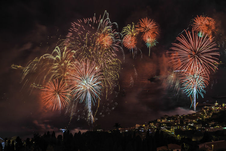 """Backgrounds Beauty In Nature Celebration Close-up Dandelion Exploding Firework Firework Display Fragility Glowing Growth Long Exposure Majestic Motion Night No People Palm Tree Tropical Climate """"New Year Around The World"""""""