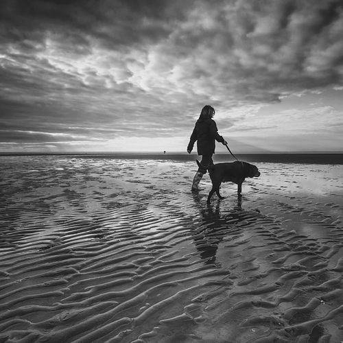 Rear view of silhouette woman with dog walking on beach