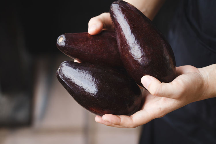 Close-up of hand holding avocados