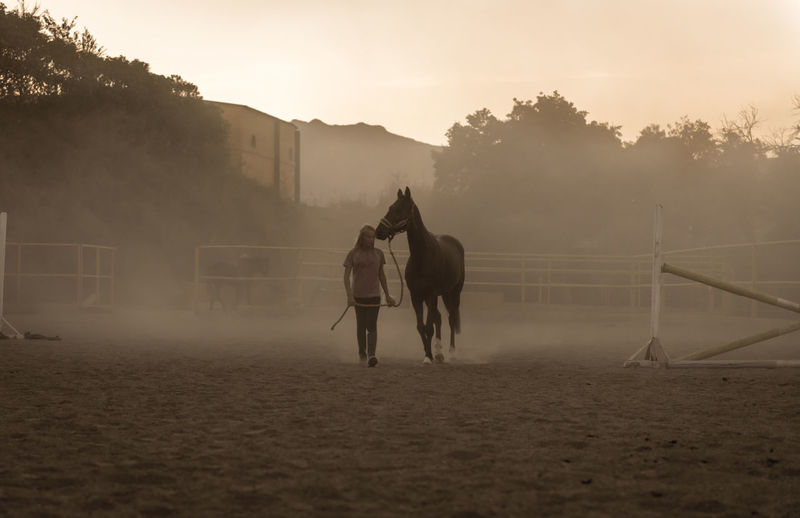 Men riding horse on field against sky during sunset