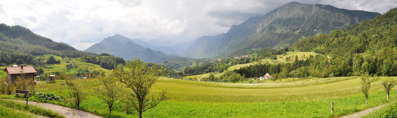 Panoramic view of green landscape and mountains against sky