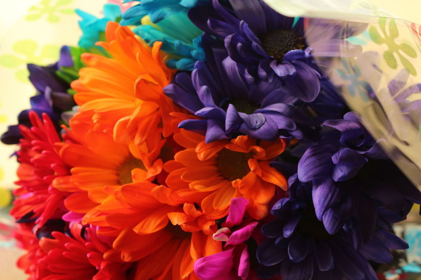 Beauty In Nature Bouquet Choice Close-up Day Flower Flower Head Flower Market Fragility Freshness Multi Colored Nature No People Outdoors Retail  Variation