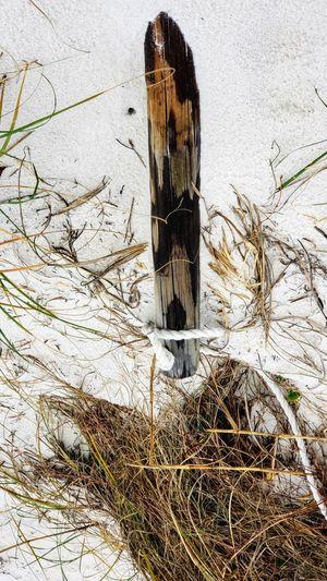 No fence Snow Cold Temperature Winter Communication Close-up Architecture