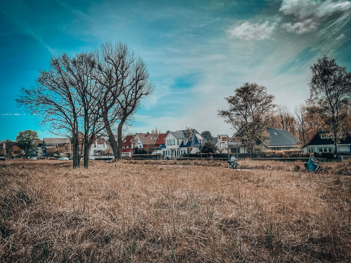 Bare trees on field by houses against sky