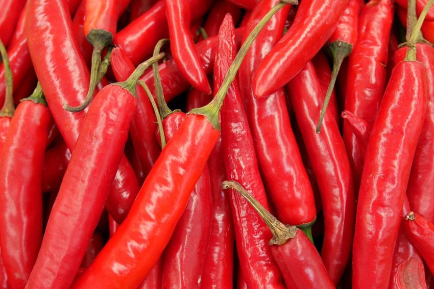 Chilli in Asian markets. Red Freshness Spice Food And Drink Food Vegetable Market Close-up No People Healthy Eating Vegetarian Food Vegetables Chilli Hot And Spicy