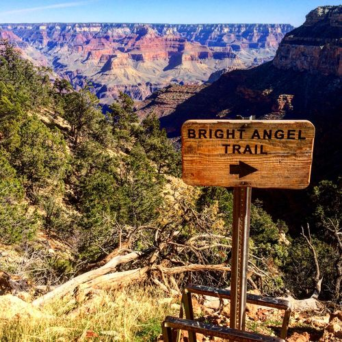 What an amazing place to hike! Grand Canyon Arizona Nature Trails Hike Hiker Hikingadventures Loveit Outdoors Beauty In Nature Landscape Gorgeous Amazing Breathtaking View Wildlife Wilderness Naturesbeauty Majestic Tranquil Scene Travel Destinations