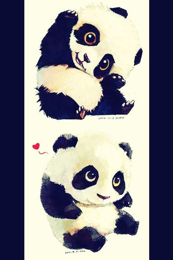Cutie panda!? First Eyeem Photo