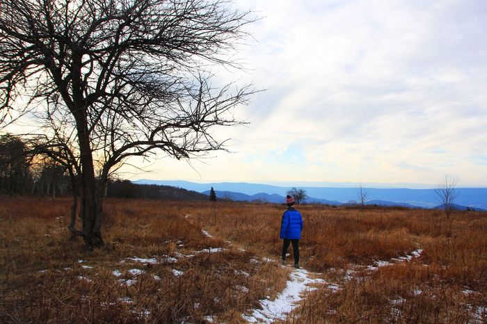 Adventure Boy Real People Nature Rear View Field Sky Full Length Beauty In Nature One Person Landscape Bare Tree Walking Lifestyles Grass Scenics Standing Leisure Activity Backpack Tranquil Scene Tranquility Outdoors Adventure Boy Kids In Nature Shenandoah Virginia