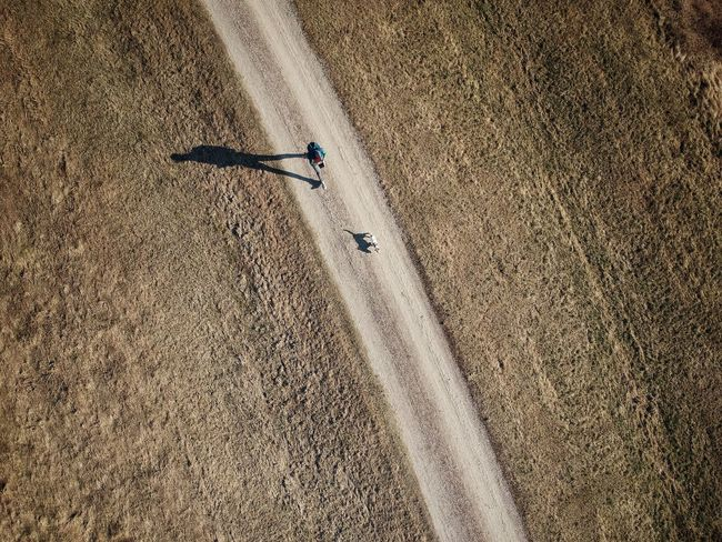 A walk on a field road from above Jackrussell Jackrussellterrier Dog High Angle View Occupation Sunlight Day Men Nature Real People Land Road Landscape Shadow Outdoors Field Rural Scene People Dirt