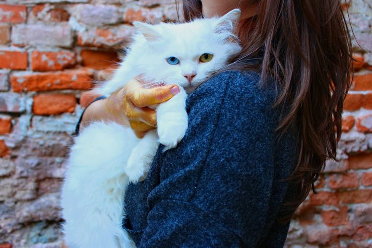Full length of woman holding cat against brick wall