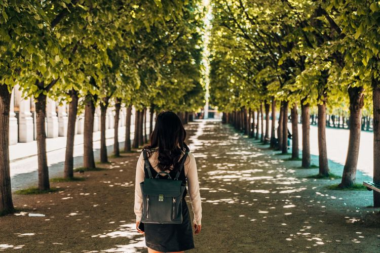 Rear view of woman standing on footpath amidst trees