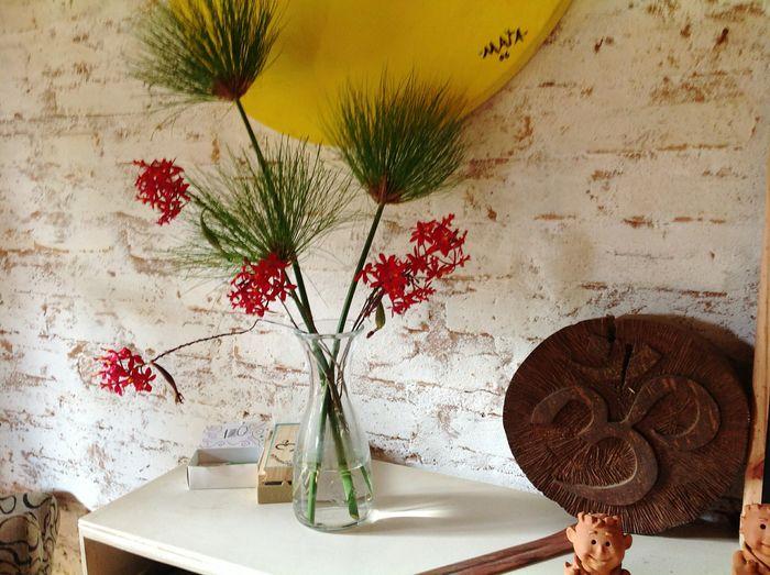 EyeEm Selects Flower Flower Head Domestic Room Orchid Vase Home Interior Table Plant Petal Plant Life In Bloom Cosmos Flower Hibiscus Blooming Flower Arrangement Bunch Of Flowers