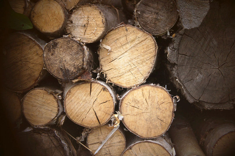 Abundance Arrangement Backgrounds Close-up Day Deforestation Environmental Issues Firewood Forestry Industry Fossil Fuel Fuel And Power Generation Full Frame Heap Large Group Of Objects Log Lumber Industry No People Shape Stack Textured  Timber Wood Wood - Material Woodpile