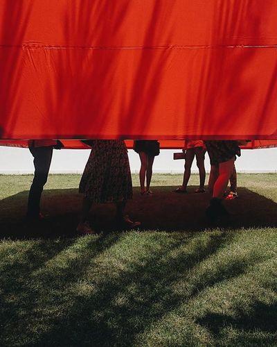 """Hoje o Inhotim inaugurou duas novas exposições temporárias: """"Do Objeto para o Mundo - Coleção Inhotim"""" na Galeria Fonte e """"I Am Not Me, The Horse Is Not Mine"""" de William Kentridge no Galpão. Viemos conferir e registrar as novidades a convite do @inhotim. 💚 Inaugurainhotim Meuinhotim"""