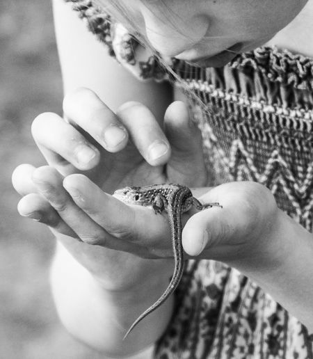 Close-Up Of Child Holding Lizard