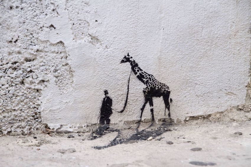 Streetphotography Streetart Stencil Stencilart Stencil Art Giraffe Wall Black And White Blackandwhite