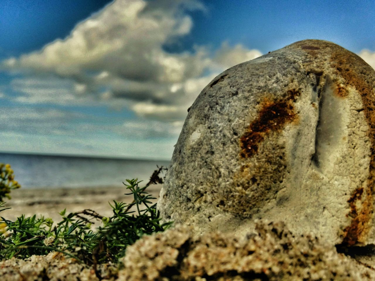 sky, rock - object, day, nature, sea, no people, outdoors, close-up, moss, beach, water, horizon over water, beauty in nature