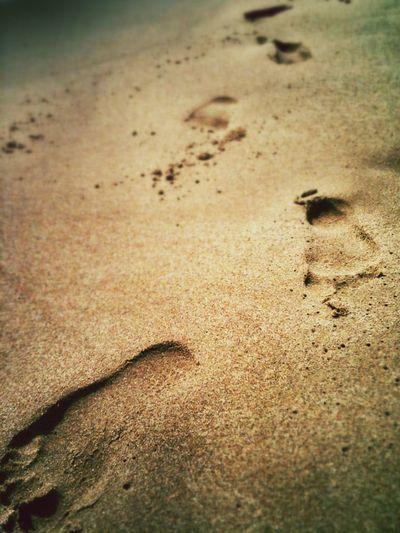 Foot Sealife Nature Relaxing Costa Sud - Sicilia