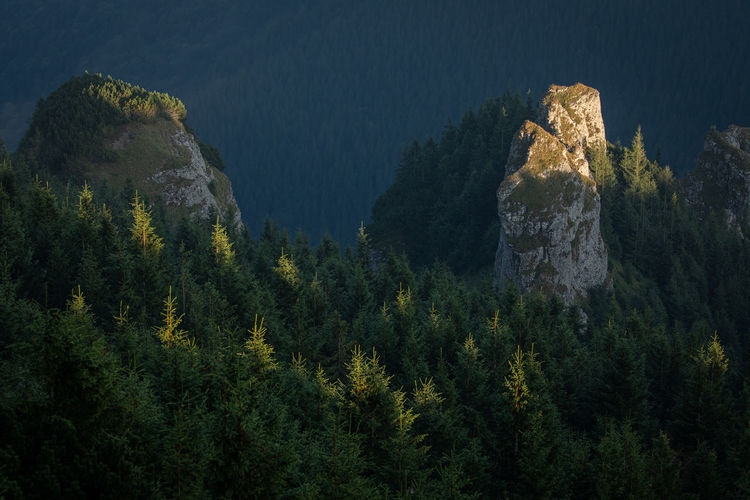 Morning landscapes from ceahlau mountain, romania.