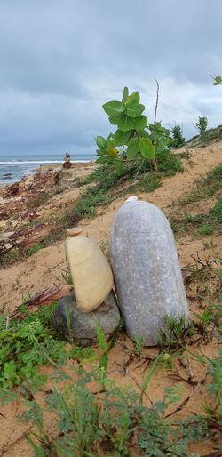 Stones... Sea