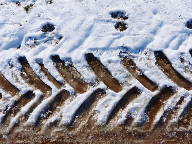 Full Frame Sand High Angle View Backgrounds Pattern Snow Close-up Winter Skidmarks Footprints Geometric Structures Geometric Shape Skidmark No People Outdoors Textured  Road Muddy Road Geometry Pattern Cold Temperature Frozen Frozen Earth Patterns And Textures Nature Lines And Shapes