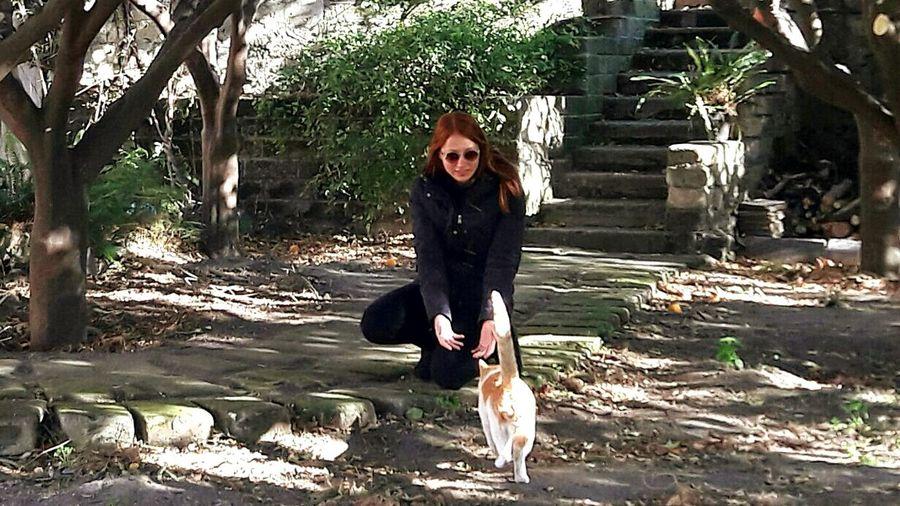 Ercolano. Gatto Ercolano Napoli Cat Italia Italy Rossi Ginger Redhead