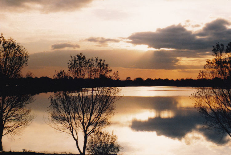 Sunset over The Park Lake County Armagh Lurgan Northern Ireland Beauty In Nature Cloud - Sky Idyllic Lake Nature No People Non-urban Scene Outdoors Plant Reflection Reflection Lake Scenics - Nature Silhouette Sky Sunset Tranquil Scene Tranquility Tree Water Waterfront