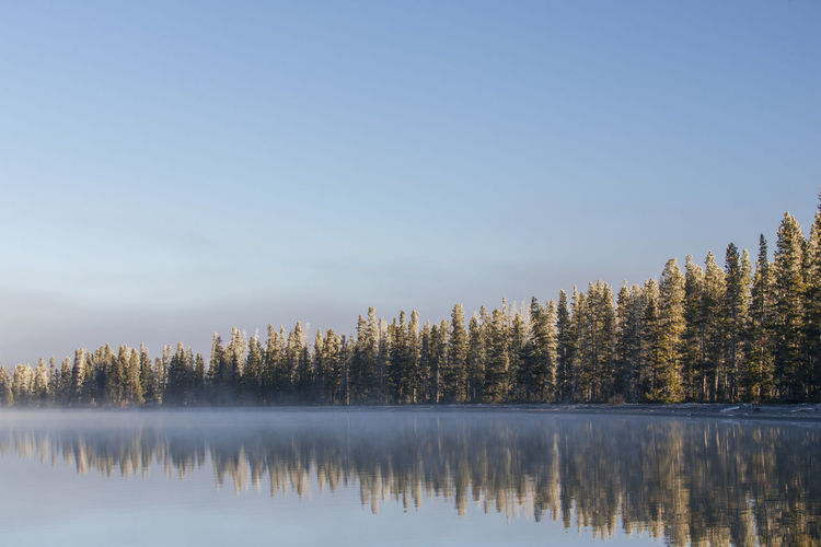Lewis Lake,