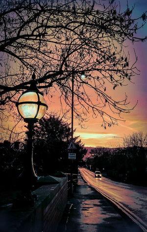 streetlights at dawn in Welshpool Wales Streetlights Uk Orange Color Dusk Welshpool Road Car Purple Car Lights Morning Sunrise Colorful утро фонари Sunset Sky Tree Silhouette Outdoors No People Nature Beauty In Nature
