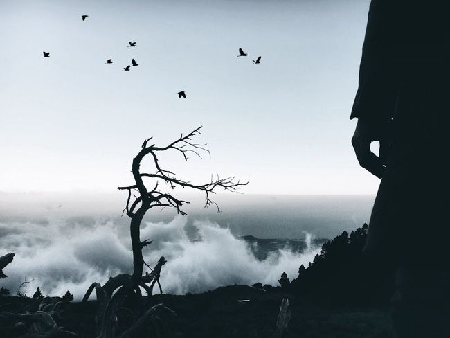 'Reaper' EyeEm The Week Of Eyeem EyeEm Best Shots Cinema In Your Life