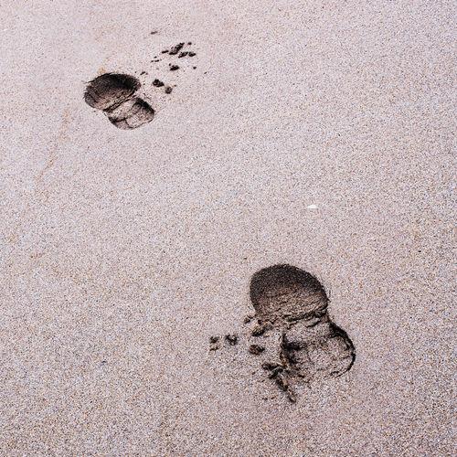 Step by step... Beach Close-up Footprints Man Sand Surface Level Textured  Wet