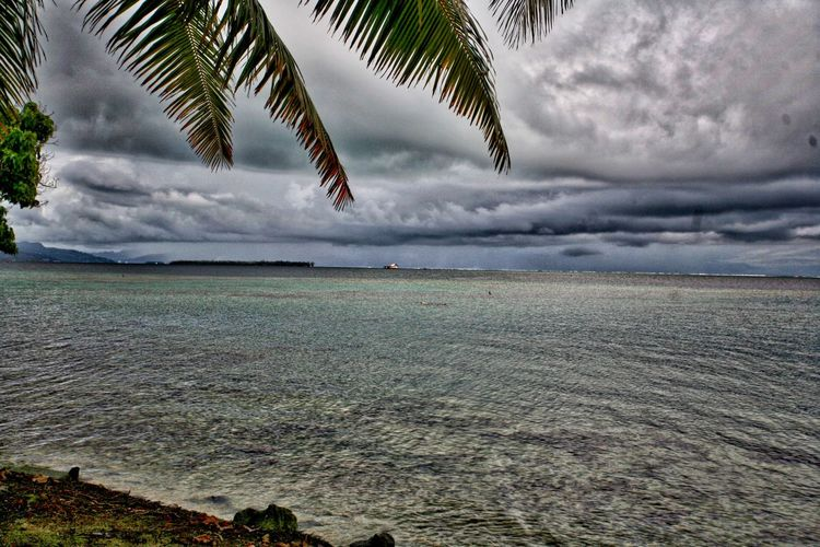 Storm approaching Raingora Horizon Over Water Storm Clouds Gathering Sky Cloud - Sky Beauty In Nature Nature Tranquility Tranquil Scene Day Land Scenics - Nature Plant Tree No People Water Beach Environment Landscape Outdoors Sea