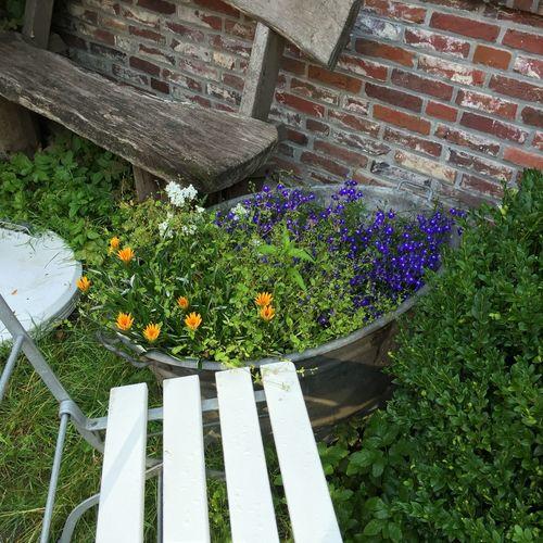 Flower Collection Kurhaus Dangast