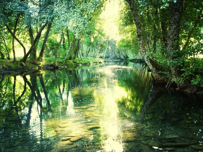 Hanging Out River Nature Paradise Landscape Enjoying The View Enjoying Life SPAIN Village Zamora Terroso