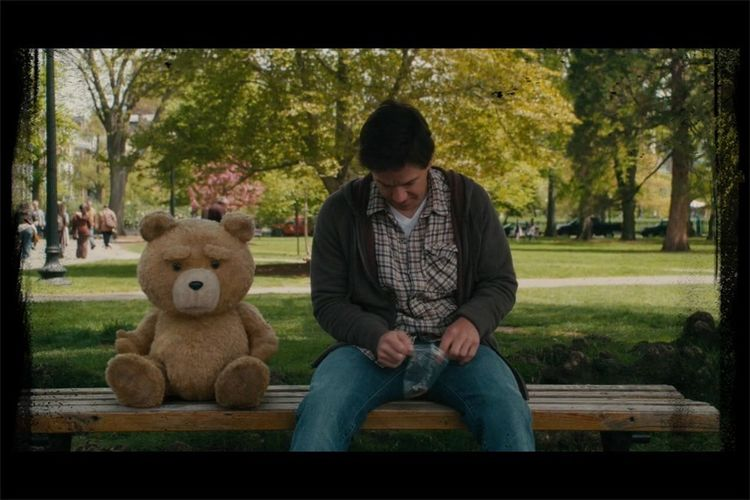 Park With A Teddy Bear