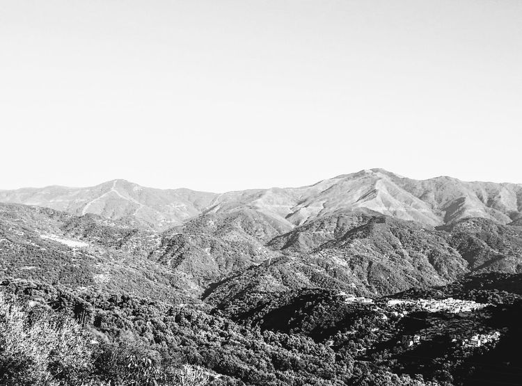 Mountain Nature No People Scenics Day Landscape Outdoors Tranquility Mountain Range Sky Beauty In Nature CostadelSol Andalucía Andalucía Nature Andalusia Beauty In Nature Black And White Nature Photography Black And White Nature Blackandwhite Pueblosblancos Andalucia Spain Andalucia Rural Andalucia España SPAIN EyeEm Nature Lover EyeEmNewHere