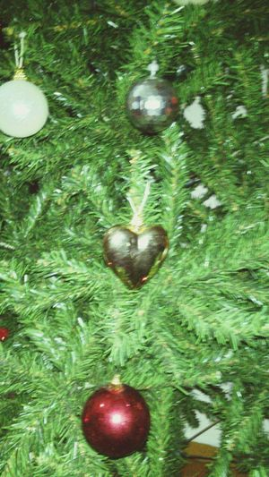 Christmas Tree Christmas Time Keep Your Christmas Mood On!