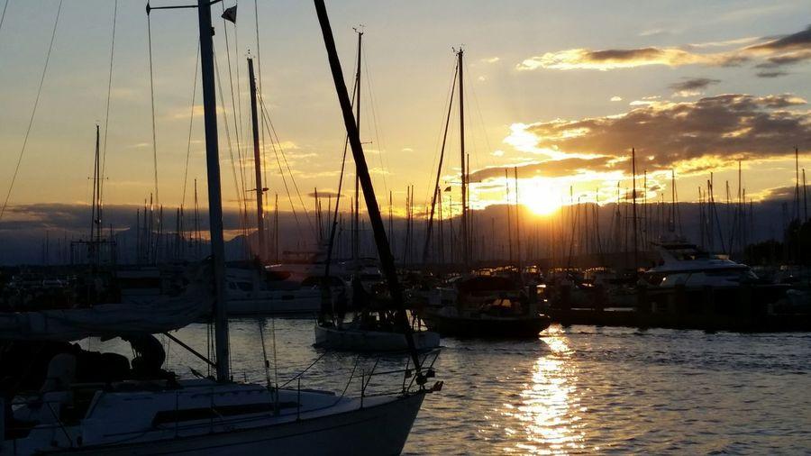 Sailing Sunset Silhouettes Eliott Bay