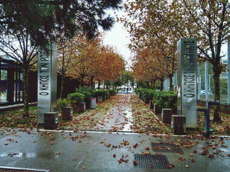 Thessaloniki Walking Around