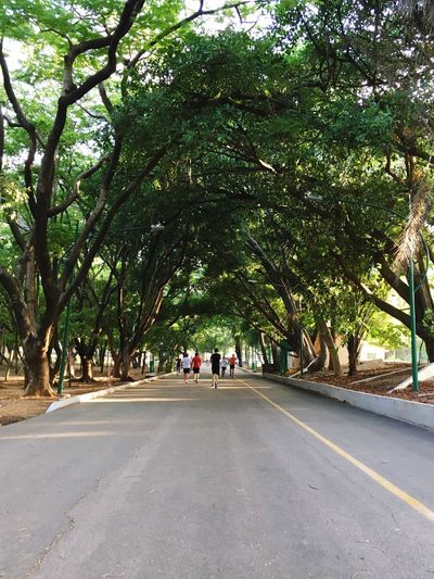Day of running .. Healthy Lifestyle Run Tree Road Direction City Plant Nature Day Men Walking Group Of People Street